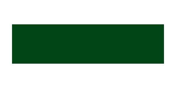 Chiene_Tait_Logo